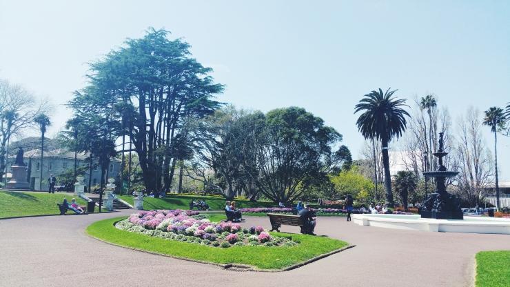 risotti e dintorni, auckland, nuova zelanda, albert park, parco