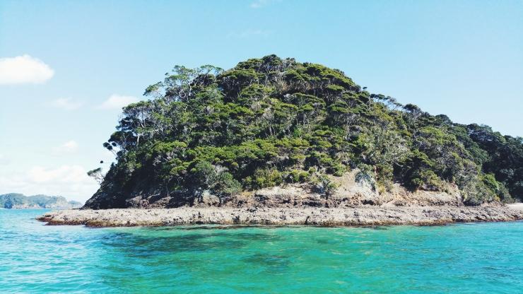 risotti e dintorni, new zealand, nuova zelanda, bay of islands